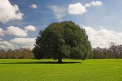 Ambiente e territorio